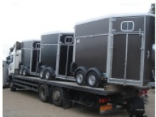 Ifor Williams horseboxes for sale from Blendworth Trailer Centre